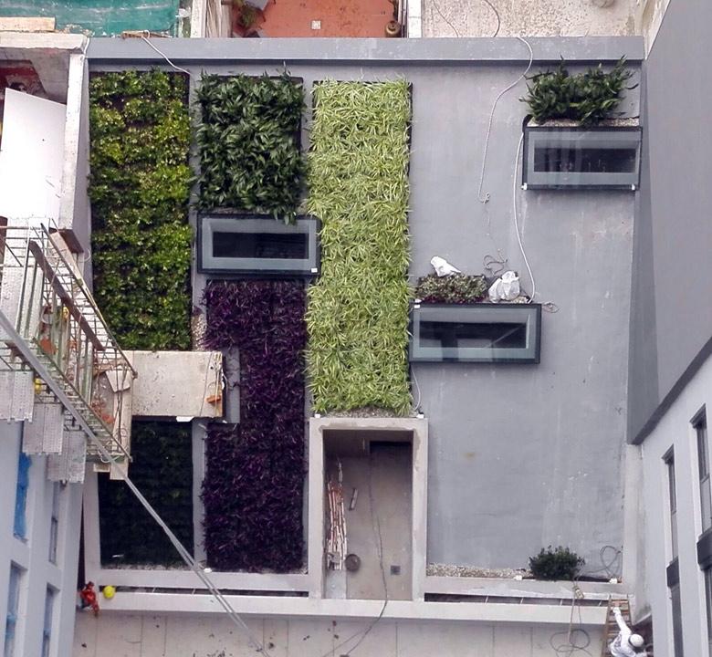Techos Verdes en obra
