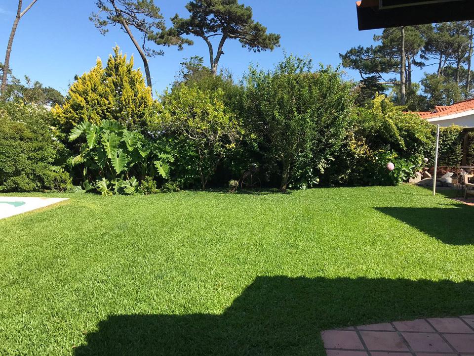 Jardines-parquizacion-28-720